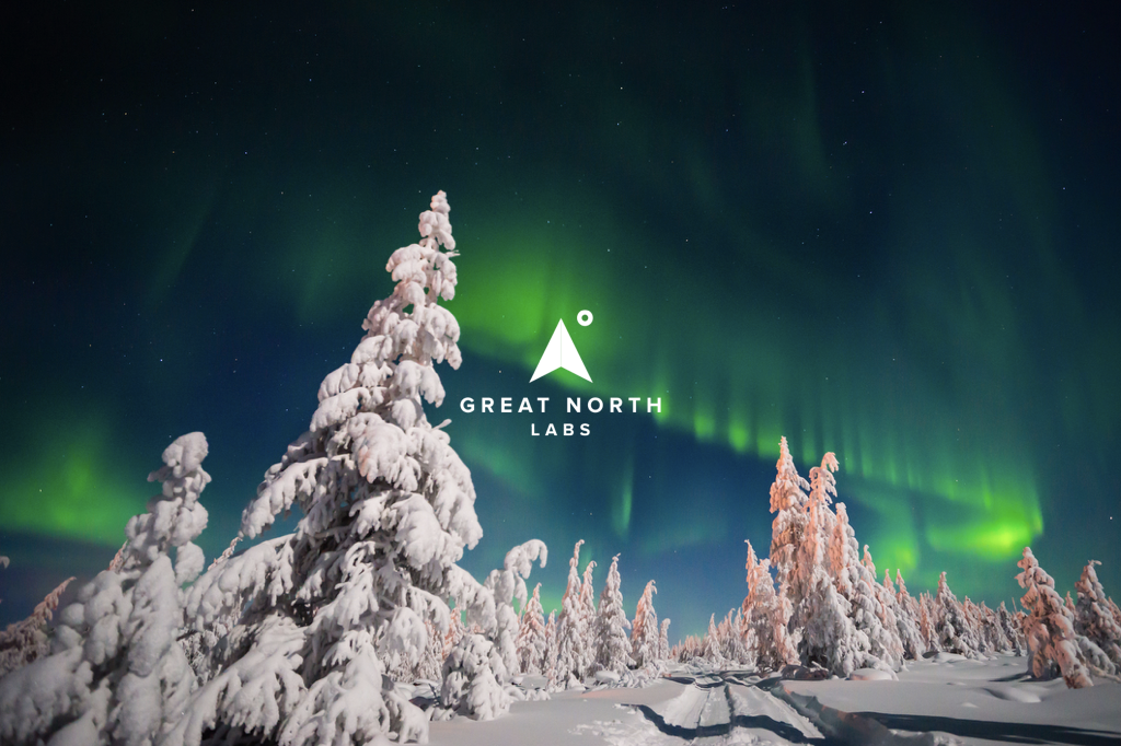 Great North Labs Newsletter December 2017