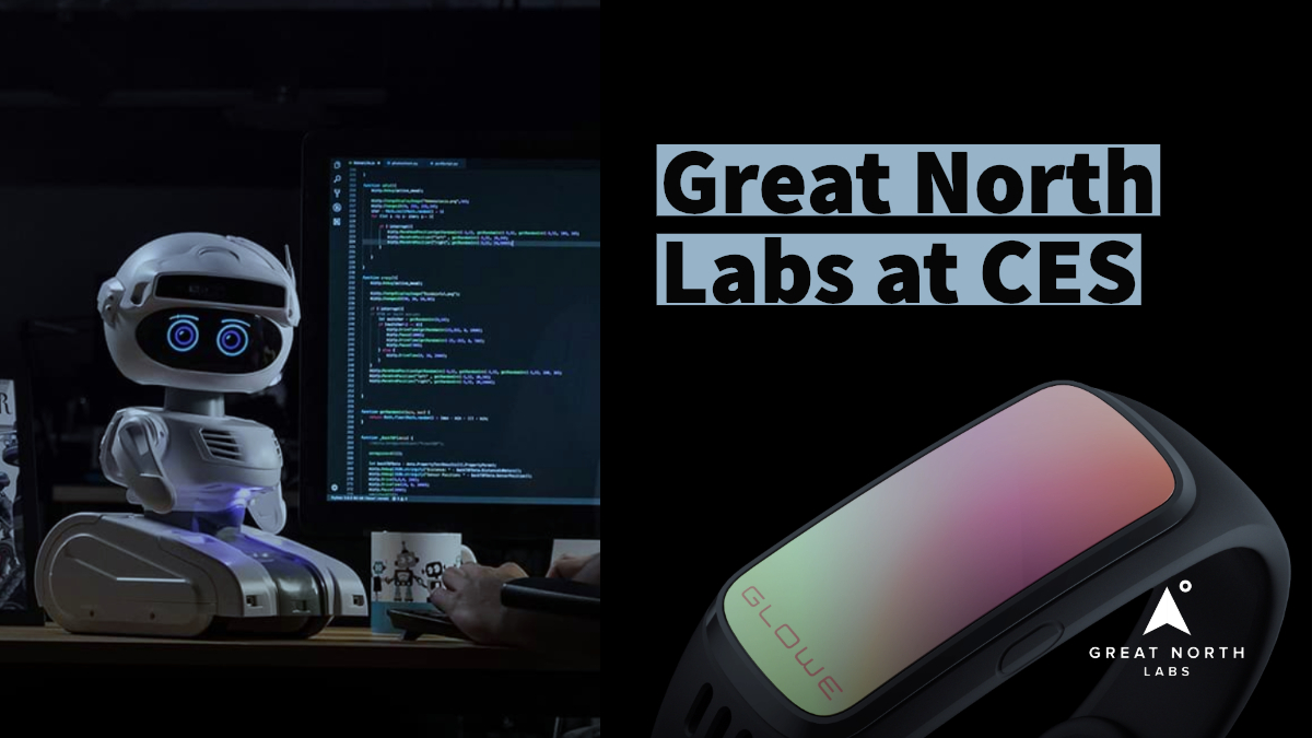 Great North Labs at CES